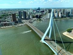 🇳🇱 Erasmusbrug, Rotterdam, as seen from the top of De Rotterdam