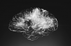 A picture of a brain